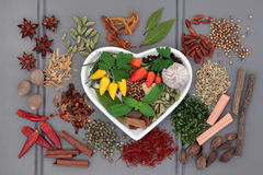 Spice and Herb Sampler Royalty Free Stock Photography