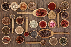 Spice and Herb Sampler Stock Image
