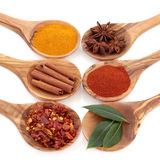 Spice and Herb Seasoning Stock Photo