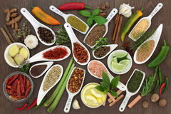 Spice and Herb Seasoning Royalty Free Stock Images