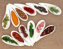 Spice and Herb Seasoning. Spice and fresh herb leaf selection in leaf shaped white dishes over hessian background stock photo