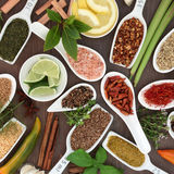 Spice and Herb Seasoning Stock Photography