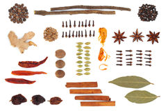 Spice and Herb Selection. In an abstract design, isolated over white background royalty free stock image