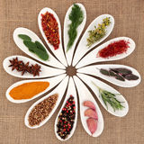 Spice and Herb Selection Stock Photos
