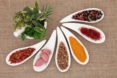 Spice and Herb Selection Royalty Free Stock Photos