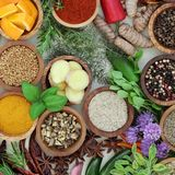 Spice and Herb Selection Stock Image