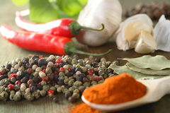 Spice and herbs royalty free stock photography