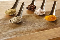 Spice and herbs in steel spoon Stock Images