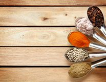 Spice and herbs in steel spoon Stock Photography