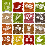 Spice icon set - 2 Stock Photo