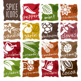 Spice icon set. Herbs can be used in studies such as the nature and quality icon set Stock Photography