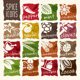 Spice icon set. Herbs can be used in studies such as the nature and quality icon set Royalty Free Stock Photo