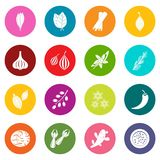 Spice icons many colors set Stock Photography