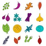 Spice icons doodle set Stock Images