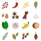 Spice icons set in flat style Royalty Free Stock Photo