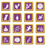 Spice icons set purple Stock Images
