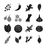 Spice icons set, simple style Royalty Free Stock Images