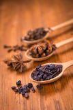 Spice In Spoon Stock Image
