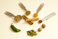 Spice Ingredients For A Meal Royalty Free Stock Images