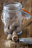 Spice jar and nutmeg grater Royalty Free Stock Image
