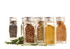 Spice jars with fresh rosemary leaves against white Royalty Free Stock Photos