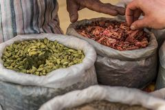 In the spice market royalty free stock photography
