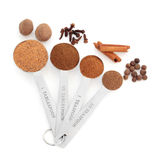 Spice in Measuring Spoons Stock Image