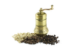 Spice mill with dash of pepper Stock Images