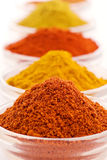 Spice Mix Royalty Free Stock Photos