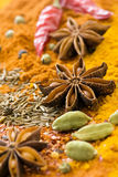 Spice Mix Royalty Free Stock Photo