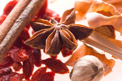 Spice Mix Royalty Free Stock Image