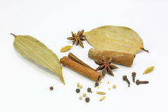 Spice mix Asian style Royalty Free Stock Photos