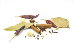 Spice mix Asian Royalty Free Stock Photography