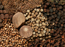Spice mix with nutmeg Stock Image