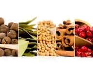 Spice Mix Stock Photo