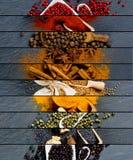 Spice Mix Stripes Royalty Free Stock Photos