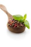 Spice. Stock Photo