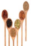 Spice Mixture stock photo
