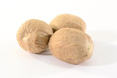 Spice nutmeg Royalty Free Stock Images