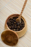 Spice Of Pepper Royalty Free Stock Photos
