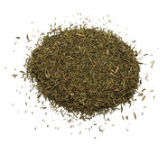 Spice Of Thyme Isolated Stock Photo