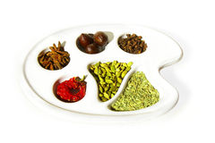 Spice Palette Royalty Free Stock Images
