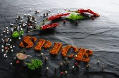 spice Paprika à terra, pimenta, alho, salsa, aneto, pimentas sortidos e fim de sal do mar acima fotografia de stock royalty free