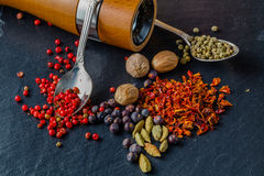 Spice and pepper grinder on slatr background Royalty Free Stock Image