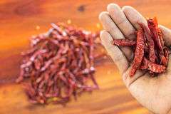 Spice pepper on hand Stock Image