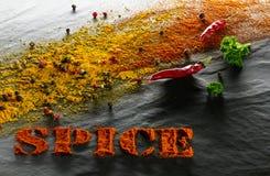 spice pimentas da cúrcuma, da paprika, as pretas, as brancas e as vermelhas, pimentas de pimentão, salsa em um fundo estrutural p foto de stock