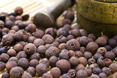 Spice pimento Royalty Free Stock Photo