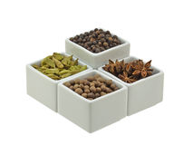 Spice pots. Four pots containing black pepper, green cardamom, star anise and all spice. Isolated on white background stock image