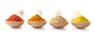 Spice Powders on Wooden Spoons Stock Image