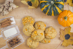 Spice pumpkin homemade cookies Stock Image